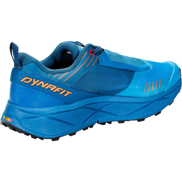 Dynafit Ultra 100 GTX Chaussures Homme, reef/ibis