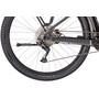 Trek Powerfly Sport 4 EQ grau/schwarz