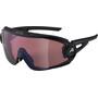 Alpina 5W1NG Q+CM Glasses, noir/gris