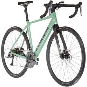 Orbea Gain D50 grün grün