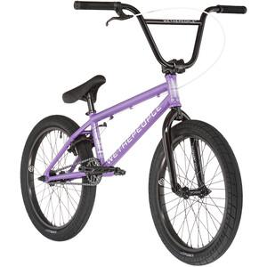 wethepeople Nova, violeta violeta