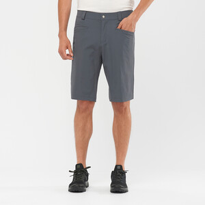 Salomon Wayfarer Shorts Men, harmaa harmaa