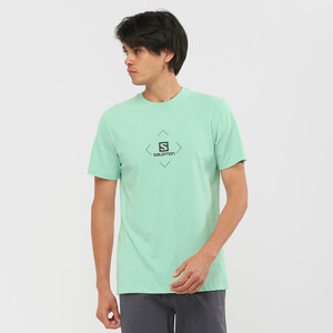Salomon Baumwoll Kurzarm T-Shirt Herren harbor gray/ashley blue/ebony harbor gray/ashley blue/ebony