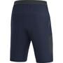 GORE WEAR R5 Shorts Herren blau
