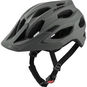 Alpina Carapax 2.0 Helm grau grau