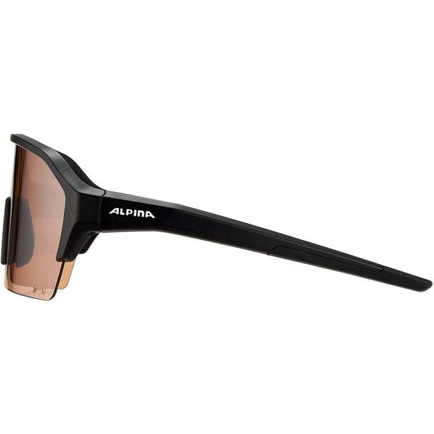 Alpina Ram HR HVLM+ Briller, sort
