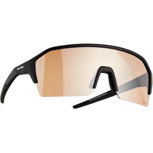 Alpina Ram HR HVLM+ Briller, sort sort