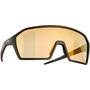 Alpina Ram HVLM+ Brille schwarz