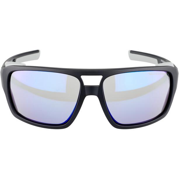 Alpina Skywalsh VLM+ Glasses, musta