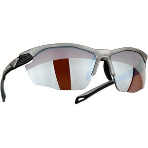 Alpina Twist Five HR HM+ Brille silber silber