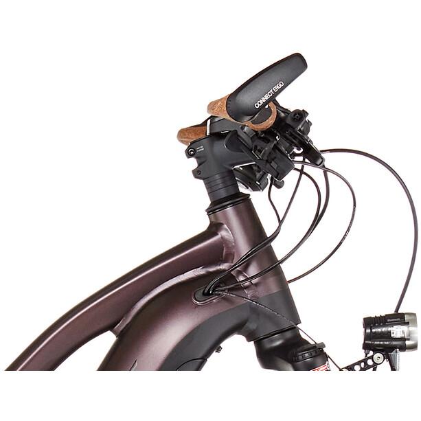 Giant Explr E+ 1 Pro STA metallic brown/black satin-matt-gloss