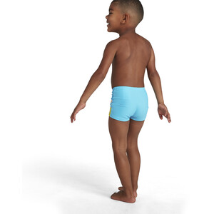 speedo Turtle Placement Aquashorts Boys, tommy turtle turquoise/bright yellow tommy turtle turquoise/bright yellow