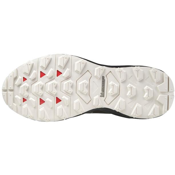 Mizuno Wave Daichi 6 GTX Schuhe Damen fudge/platinum gold/black