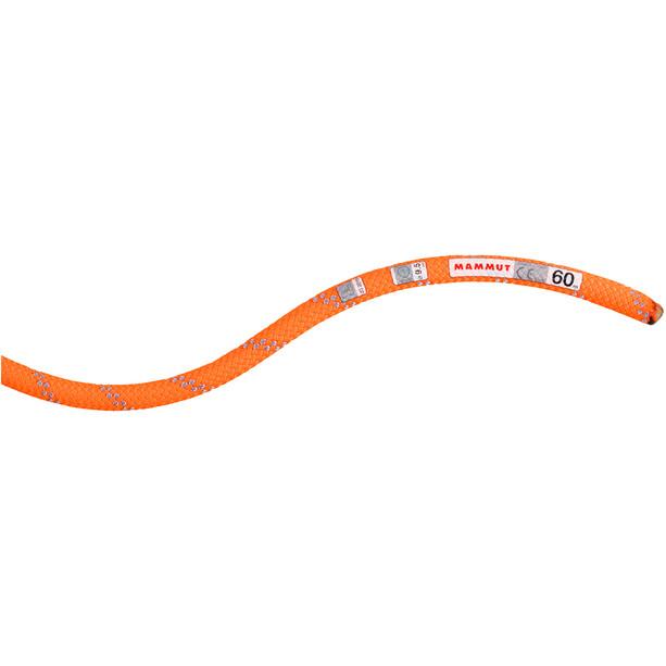 Mammut 9.5 Alpine Dry Seil 60m safety orange-zen