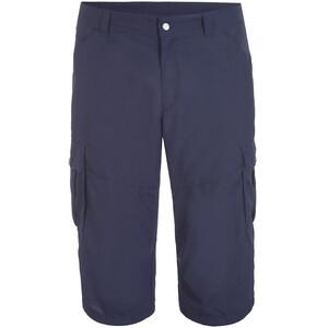 Icepeak Ep Ardoch Shorts Men, bleu bleu