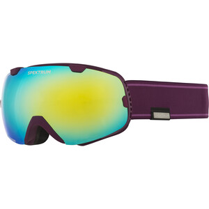 Spektrum G002 Goggles, violet/Or violet/Or