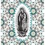 DYEDBRO Guadalupe Rahmenschutz Kit transparent