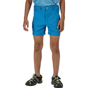 Regatta Highton Shorts Kinder blue aster blue aster