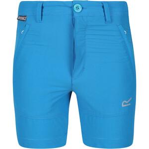 Regatta Highton Shorts Kids, bleu bleu
