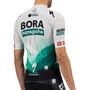 Sportful Team Bora-HG Bodyfit Trikot Herren green gray