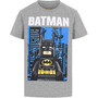 LEGO wear 12010092 T-Shirt Kurzarm Kinder grau