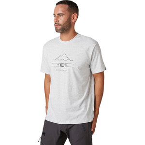 Helly Hansen Skog Graphic T-Shirt Herren grey fog grey fog