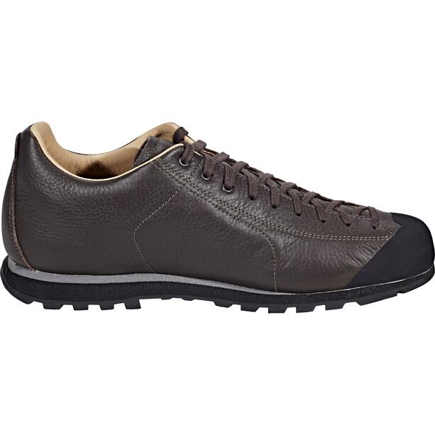 Scarpa Mojito Basic GTX Shoes brun