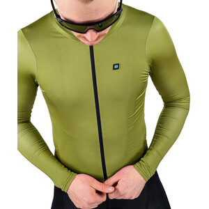 Biehler Signature Longsleeve Jersey Men grön grön