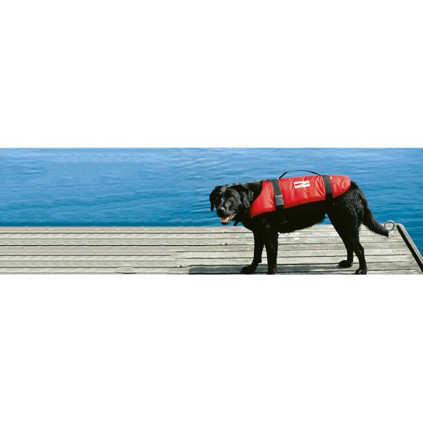 Grabner Hundeschwimmweste M schwarz/rot