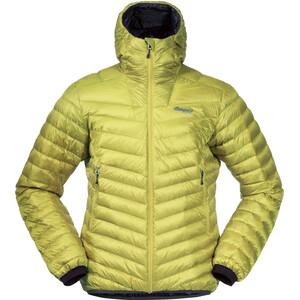 Bergans Senja Light Hooded Down Jacket Men, vert vert