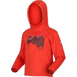 Regatta Highton Extol Hoodie Kids, oranje oranje