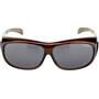 Alpina Sunglasses Overview black transparent/black