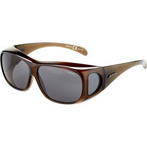 Alpina Sunglasses Overview black transparent/black black transparent/black