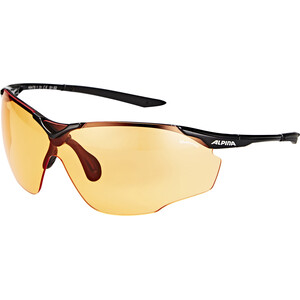 Alpina Splinter Shield VL Brille black black