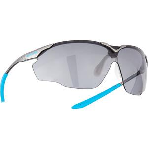 Alpina Splinter Shield VL Brille, grå grå