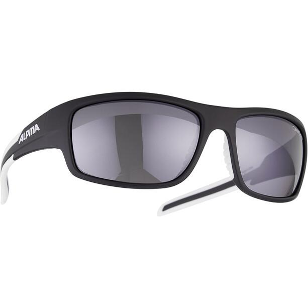 Alpina Testido Cykelbriller, sort