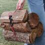 Nite Ize Figure 9 Carabiner Large med Rep black
