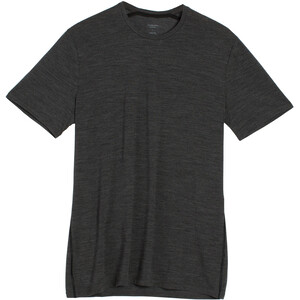 Icebreaker Anatomica T-shirt Col ras-du-cou Homme, gris gris