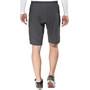 Endura Trekkit 300 Series Shorts Herr grey
