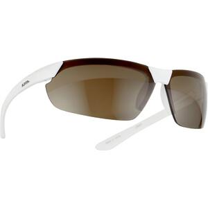 Alpina Draff Glasses white/black white/black