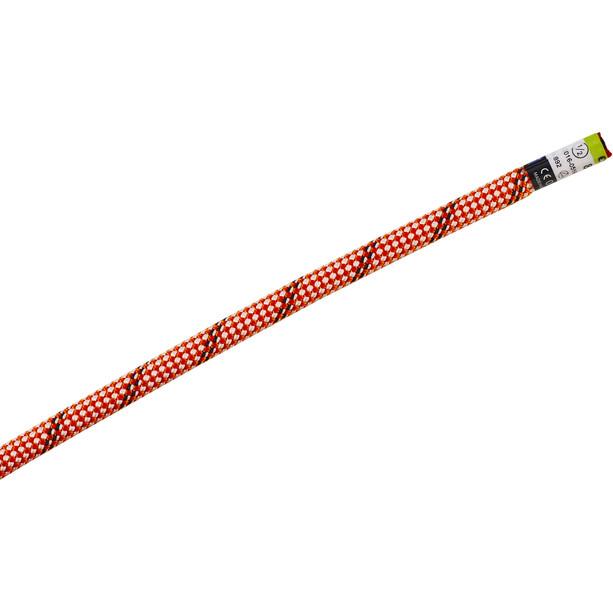 Edelrid Starling Pro Dry Halbseil 8,2mm x 60m orange