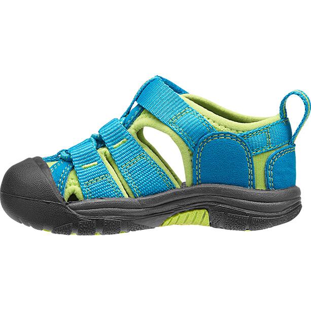 Keen Newport H2 Shoes Barn turkos
