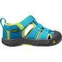 Keen Newport H2 Shoes Barn hawaiian blue/green glow