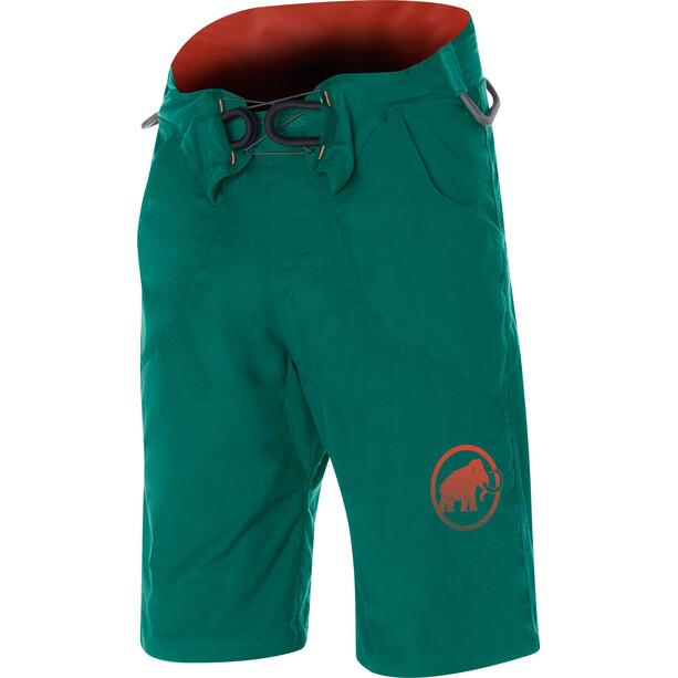 Mammut Realization Shorts Herr pine