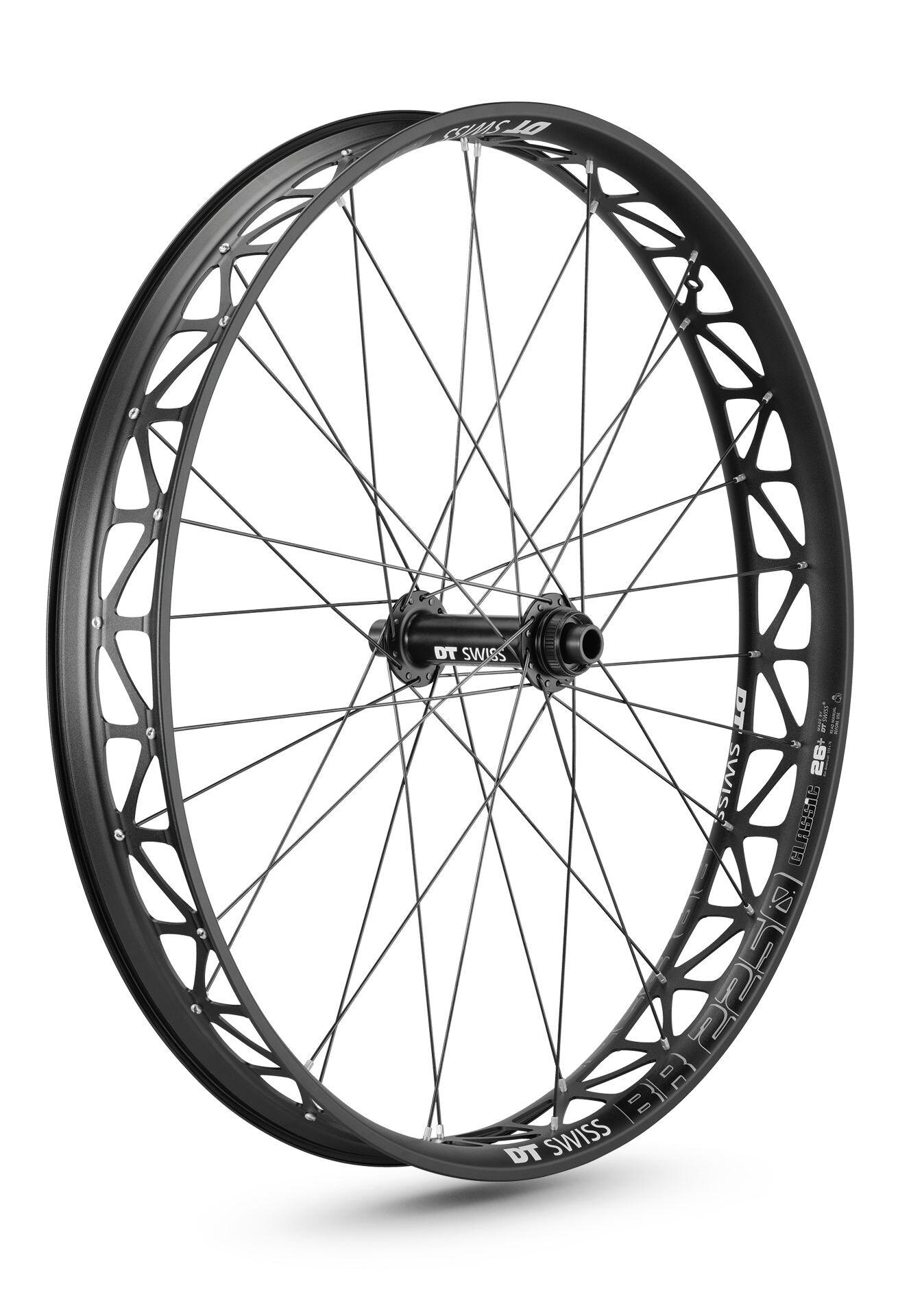 DT Swiss BR 2250 Classic Fatbike Wheel 26
