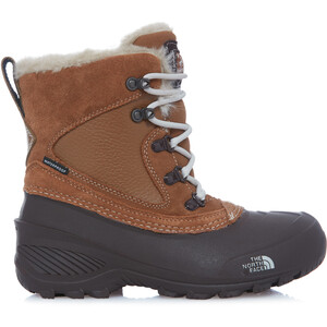 The North Face Shellista Extreme Boots Barn dchndbn/mnltivy dchndbn/mnltivy