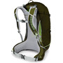 Osprey Stratos 34 Backpack Herr gator green