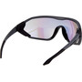 Alpina S-Way VLM+ Solbriller, sort