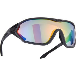 Alpina S-Way VLM+ Okulary przeciwsłoneczne, czarny czarny