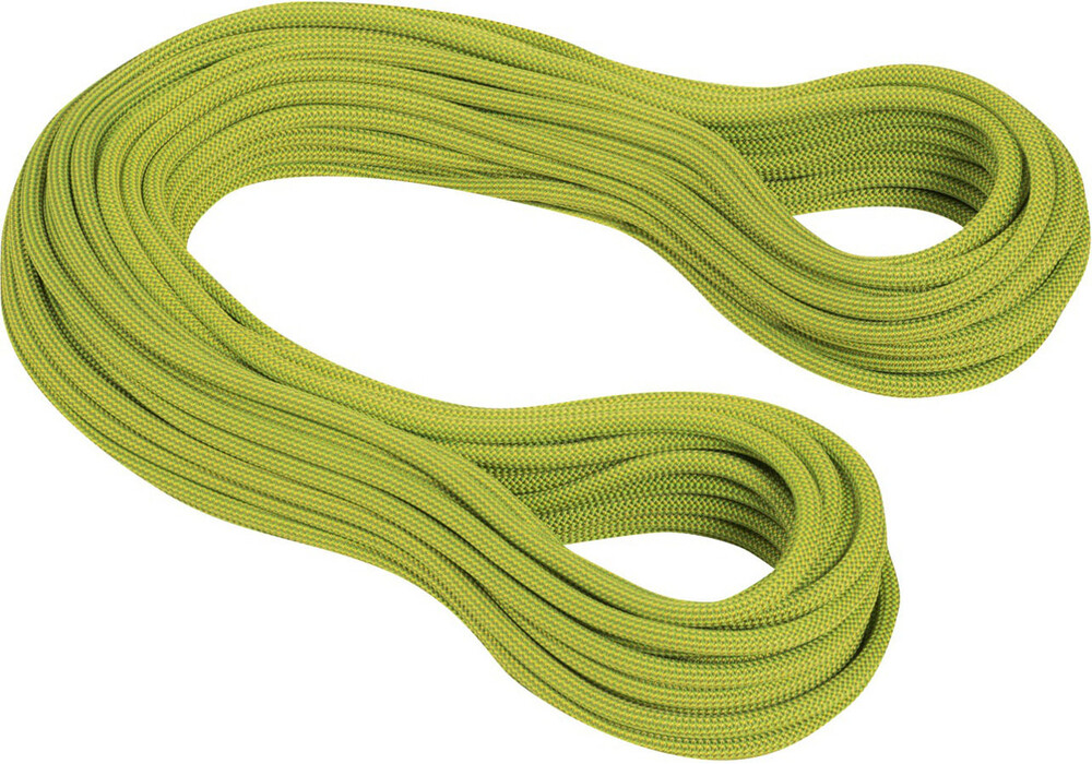 mammut 9 5 infinity dry corde d 39 escalade 80m vert sur. Black Bedroom Furniture Sets. Home Design Ideas